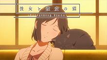 她和她的猫